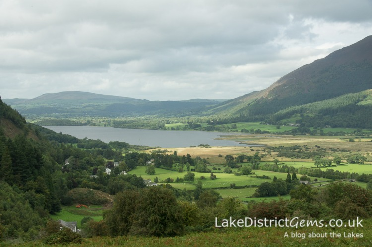 From Noble Knott car park overlooking Bassenthwaite, Dodd Wood and Skiddaw