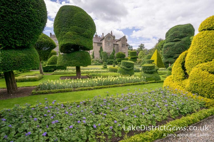 The topiary at Levens Hall