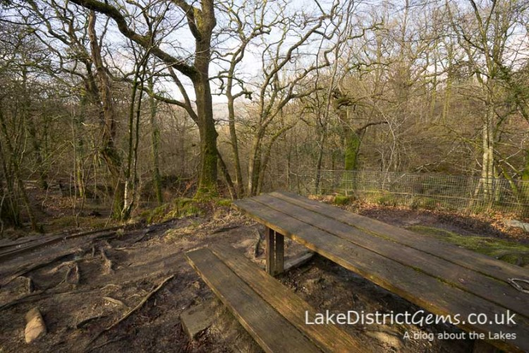 Picnic benches on the Stockghyll Force walk
