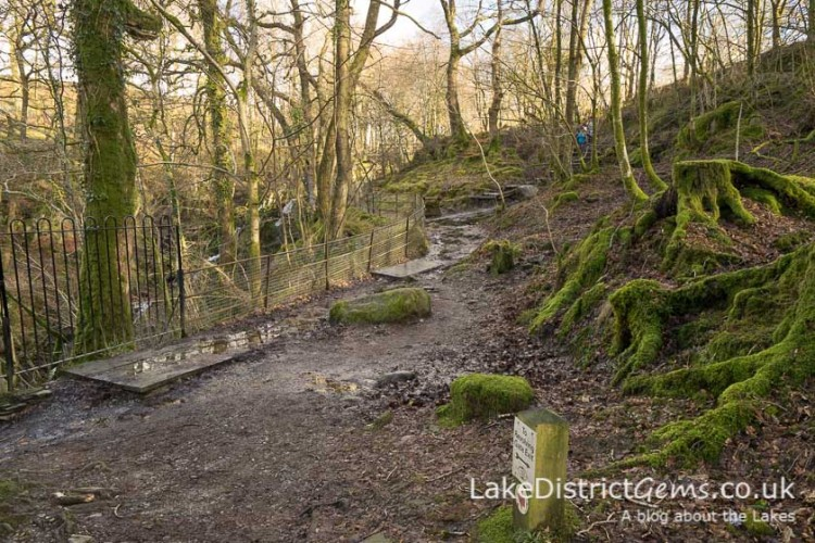 Stockghyll Force walk