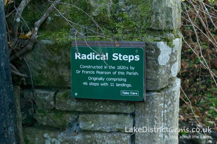 Sign to the Radical Steps