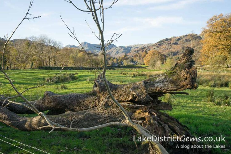Elterwater to Skelwith Bridge walk